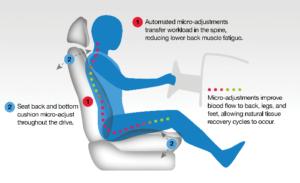 CMG Seat Diagram